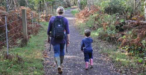 Forest childcare is good for adults too