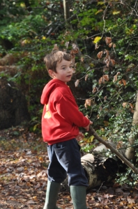 Forest childcare autumn