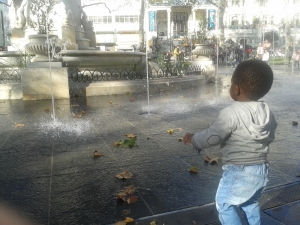 urban forest childcare leaves by the fountain