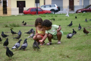 Forest Childcare birds in the city park