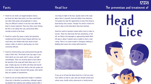 headlice prevention sheet